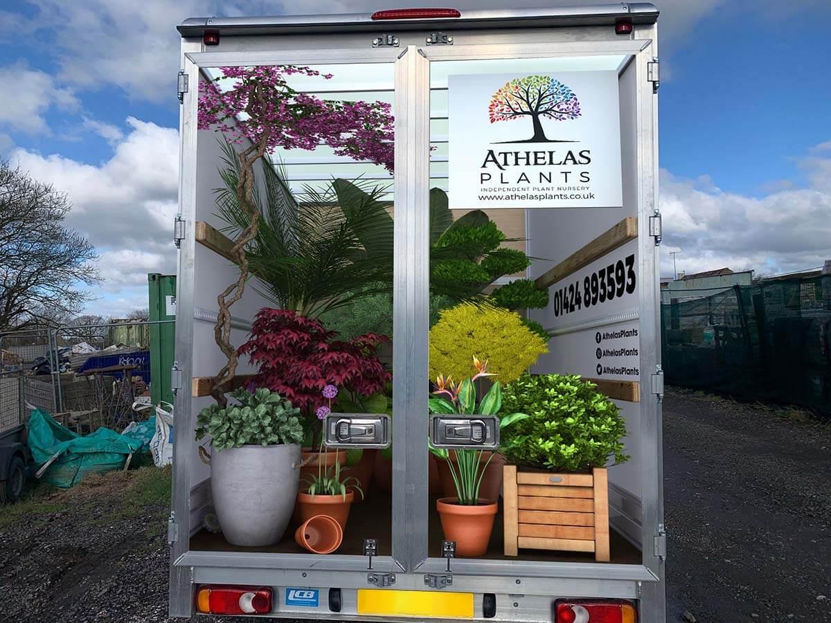 Athelas Plants 3D Van Rear Doors Concept Mockup