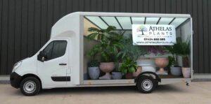 Athelas Plants Van 3D Wrap With Plants